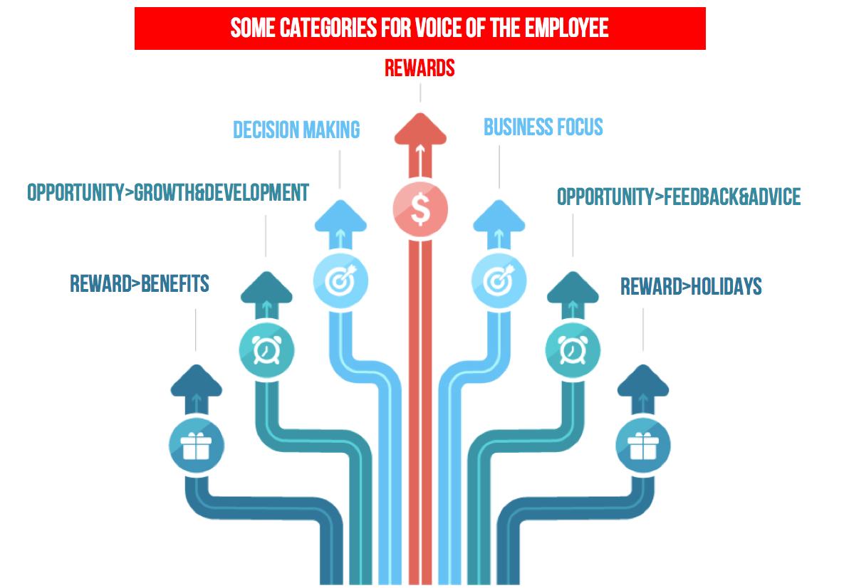 Diagram showing some of the categories for the voice of the Employee