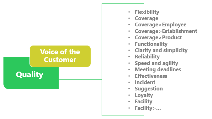 Voice of the Customer quality